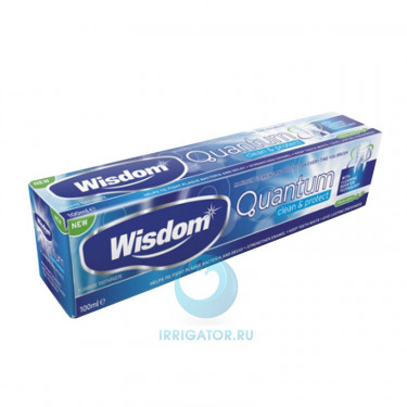 Зубная паста Wisdom Quantum Clean and Protect, 100 мл